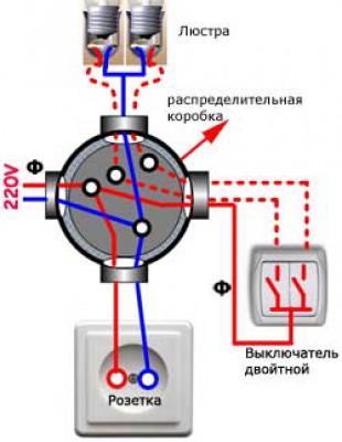 На фото изображено возможное расположение проводов в распредкоробке