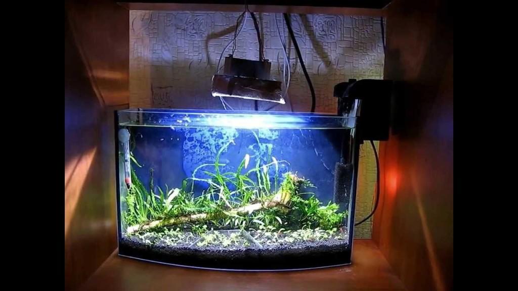 Освещение аквариума при помощи прожекторов со светодиодами