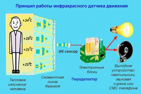 На фото принцип работы инфракрасного датчика движения