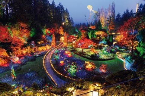 Создаем освещение садового участка