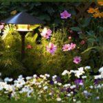 Светильник для заливающего освещения в саду