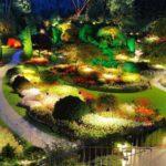 Заливающее освещение сада