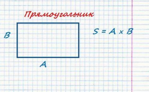 Как вычислить площадь помещения