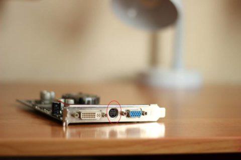 Выходы видеокарты: в центре S-Video, слева DVI, справа VGA