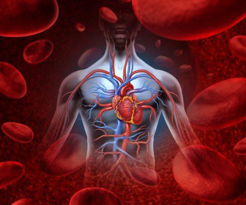 Электролиз крови и других жидкостей в теле человека