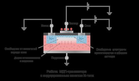 Принцип действия полевого транзистора с изолированным затвором основной детали таймер розетки