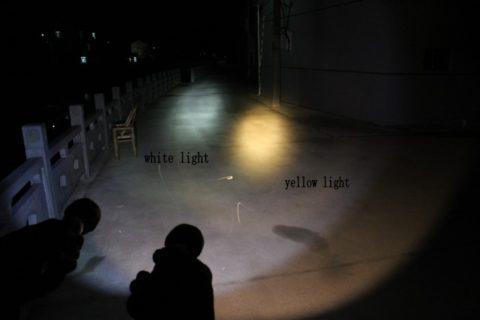 Сравнение подводных фонарей с теплым и холодным светом