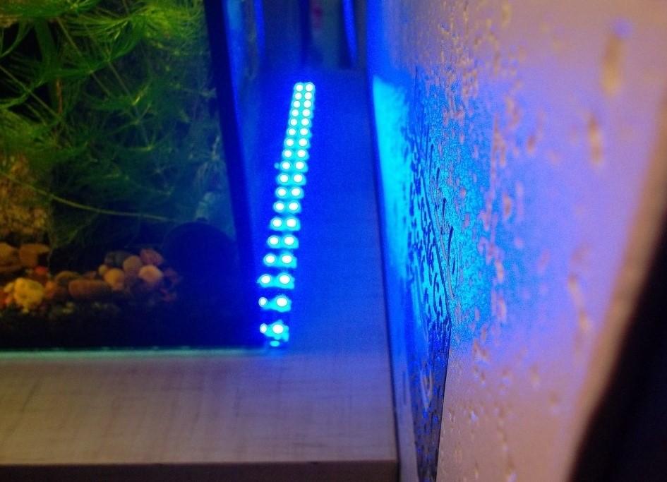 Подсветка для аквариума своими руками из светодиодов