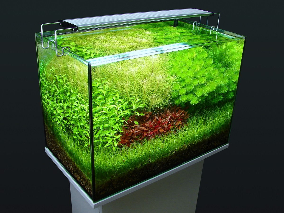 Светодиодные светильники в аквариуме своими руками