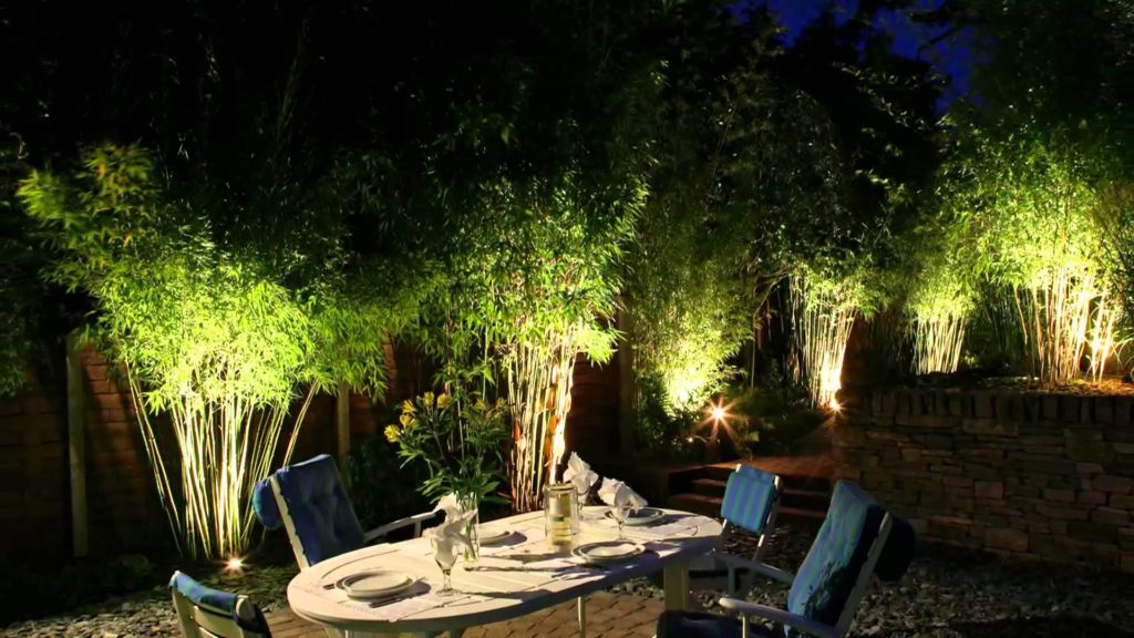 На фото подсветка крон деревьев или кустов