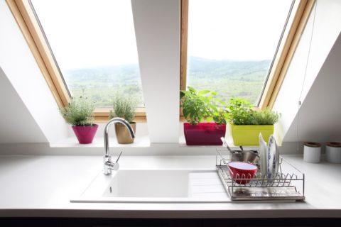 Растения на мансардном окне