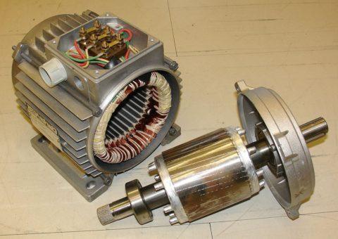 Извлеченный ротор асинхронного двигателя