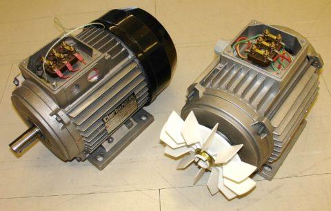 Неприхотливые в эксплуатации электромоторы