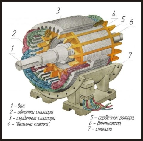Схематическое строение трехфазного двигателя