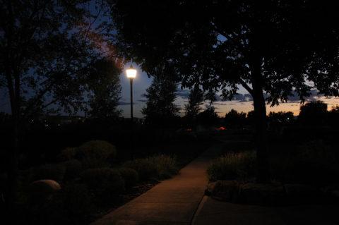 Недостаточно освещенный парк