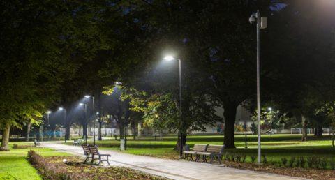 Парк, освещенный в ночное время