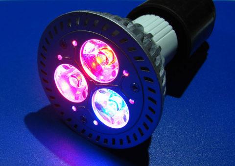 Лампы освещения светодиодные для цветов