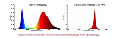 Сравнение спектров двух видов светодиодов