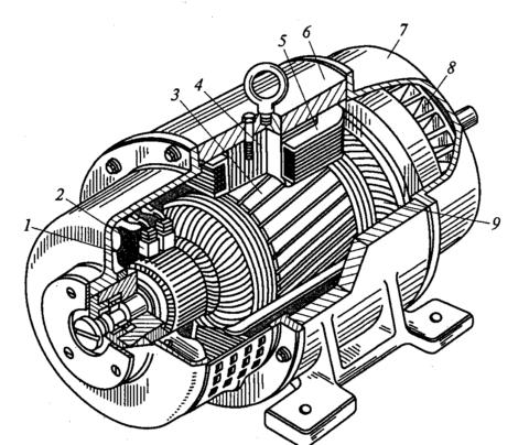 Устройство машин постоянного тока – генератор в разрезе