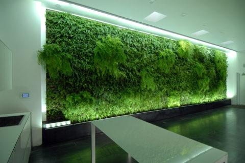 Живая стена из папоротника с искусственной подсветкой