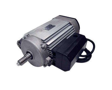 Синхронный однофазный двигатель переменного тока работает от общественной сети