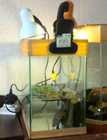 Для аквариумов освещение реализуется разными способами