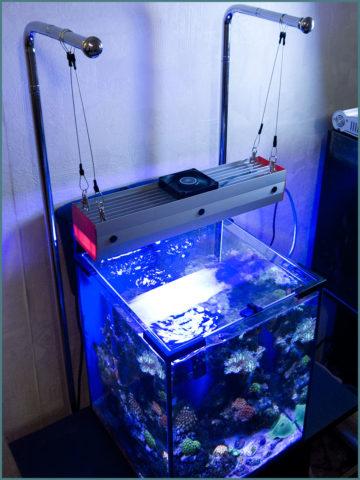 Освещение для аквариумов – подвесные лампы