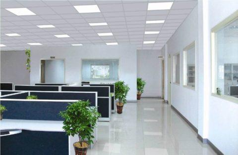 Как организовать освещение, используя светильники светодиодные потолочные офисные